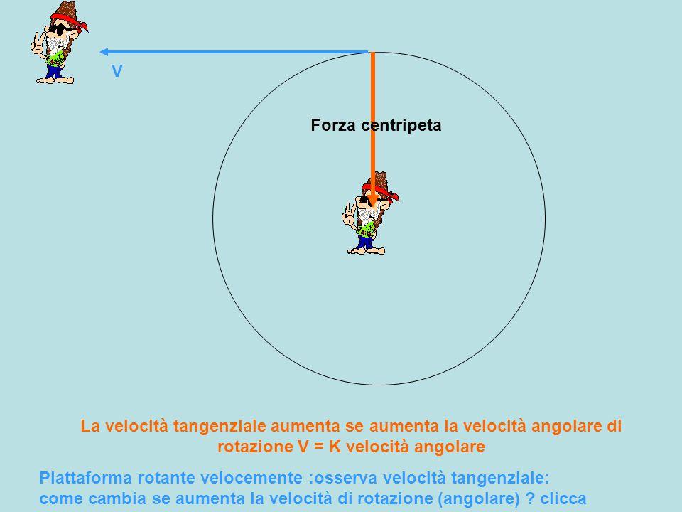 V Forza centripeta. La velocità tangenziale aumenta se aumenta la velocità angolare di rotazione V = K velocità angolare.