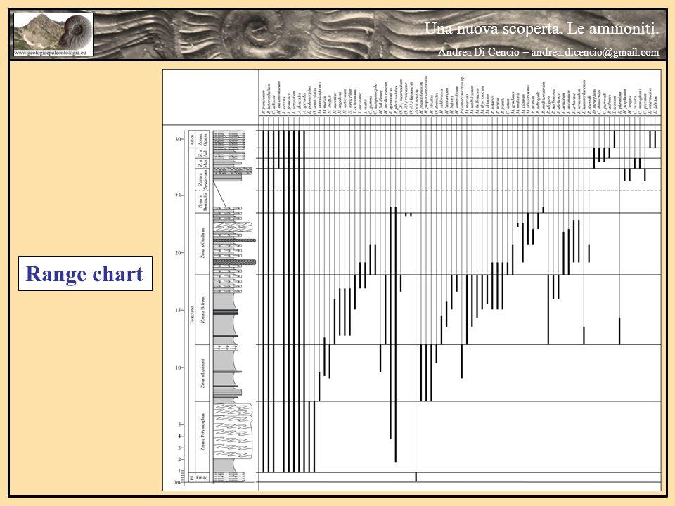 Range chart Una nuova scoperta. Le ammoniti.