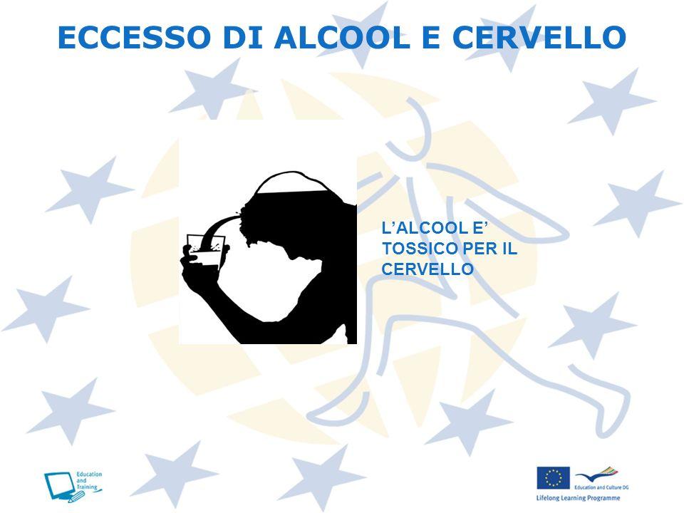 ECCESSO DI ALCOOL E CERVELLO