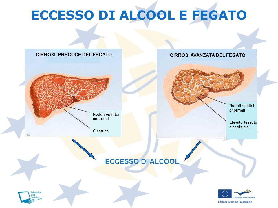 ECCESSO DI ALCOOL E FEGATO