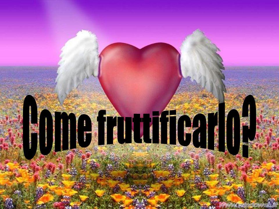 Come fruttificarlo