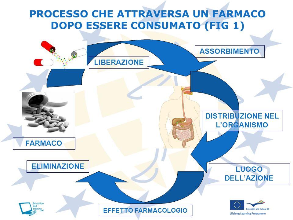 PROCESSO CHE ATTRAVERSA UN FARMACO DOPO ESSERE CONSUMATO (FIG 1)