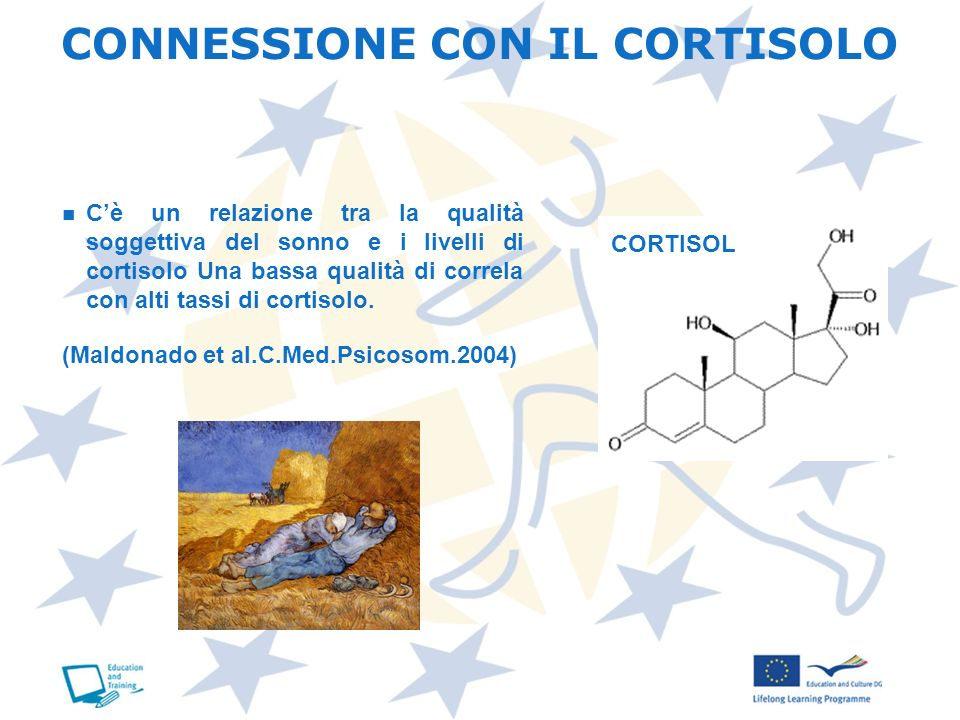CONNESSIONE CON IL CORTISOLO