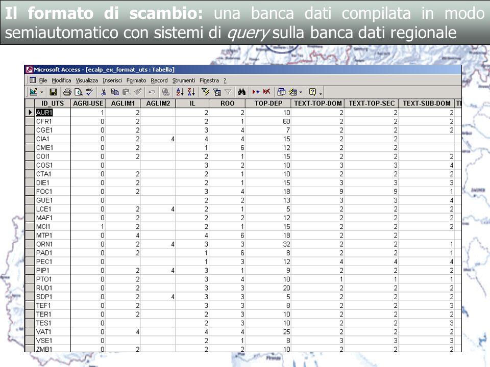 Il formato di scambio: una banca dati compilata in modo semiautomatico con sistemi di query sulla banca dati regionale