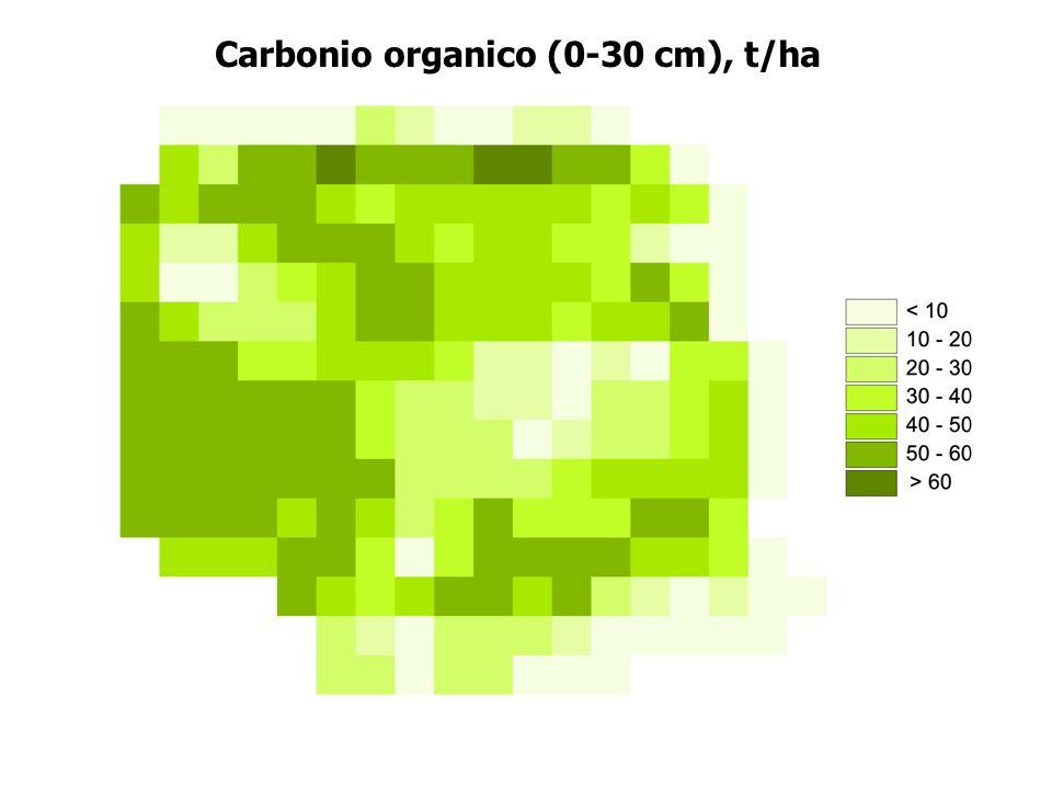 Carbonio organico (0-30 cm), t/ha
