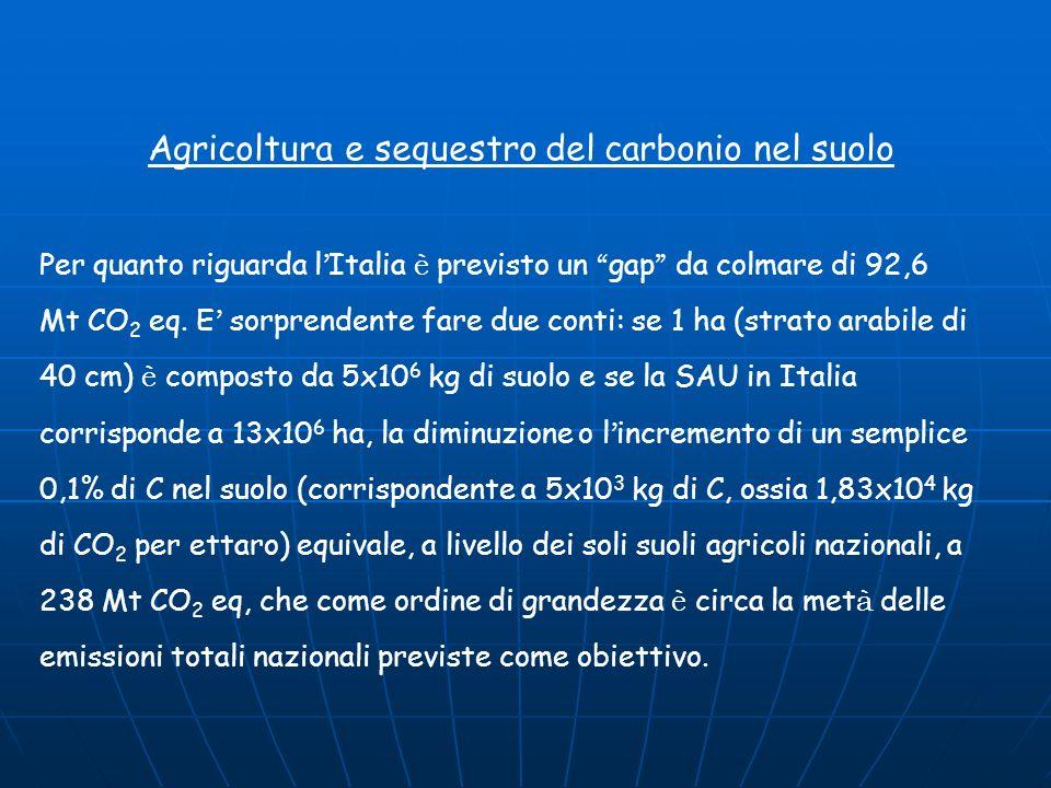 Agricoltura e sequestro del carbonio nel suolo