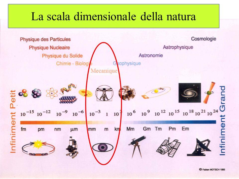 La scala dimensionale della natura