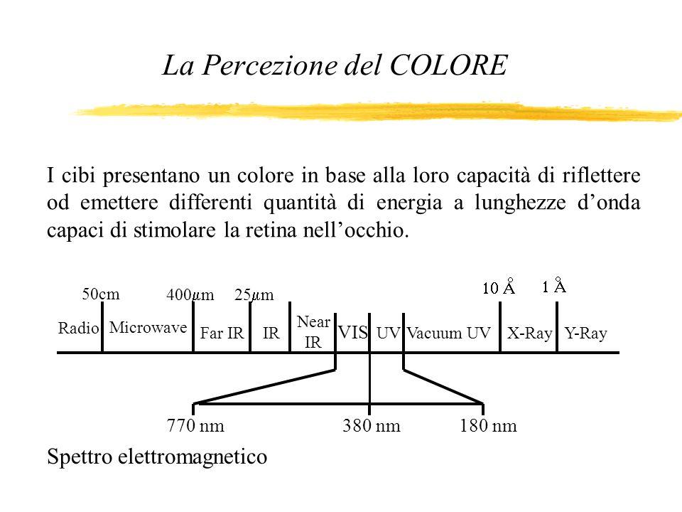 La Percezione del COLORE