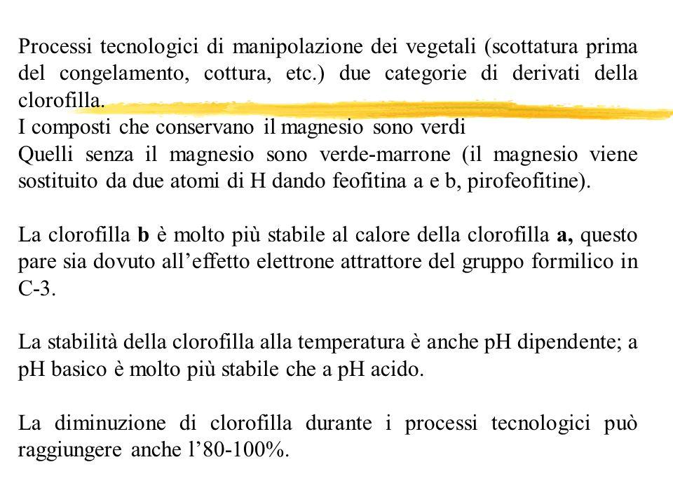 Processi tecnologici di manipolazione dei vegetali (scottatura prima del congelamento, cottura, etc.) due categorie di derivati della clorofilla.