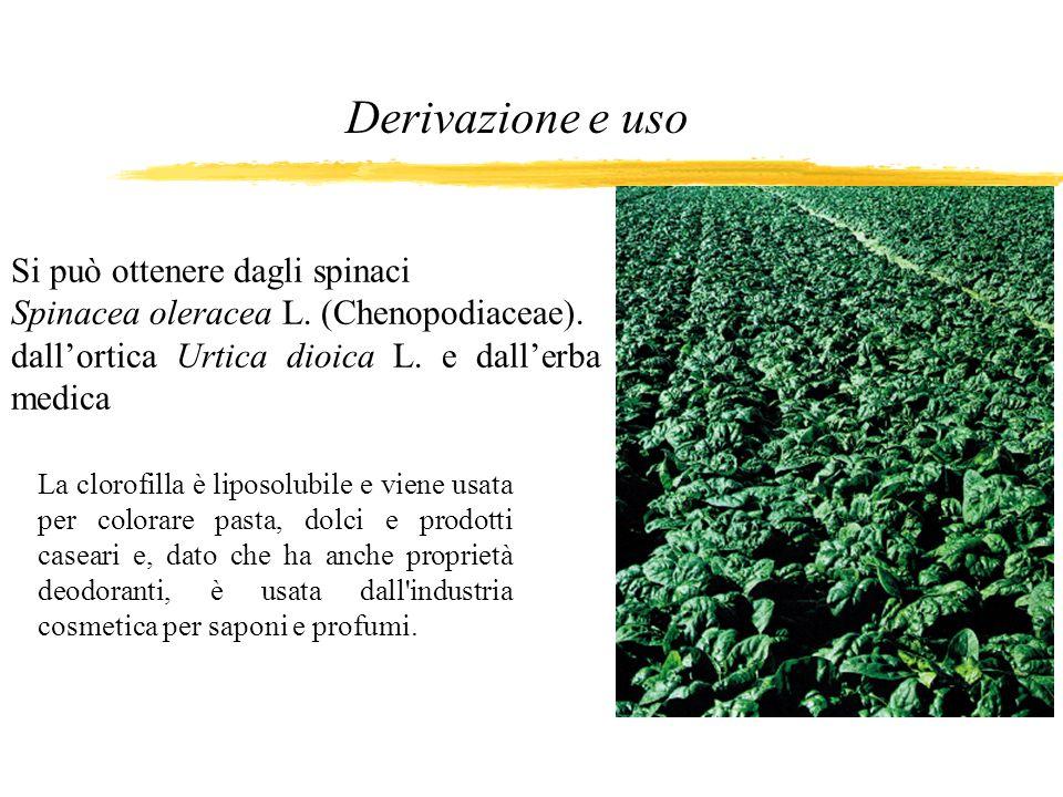 Derivazione e uso Si può ottenere dagli spinaci