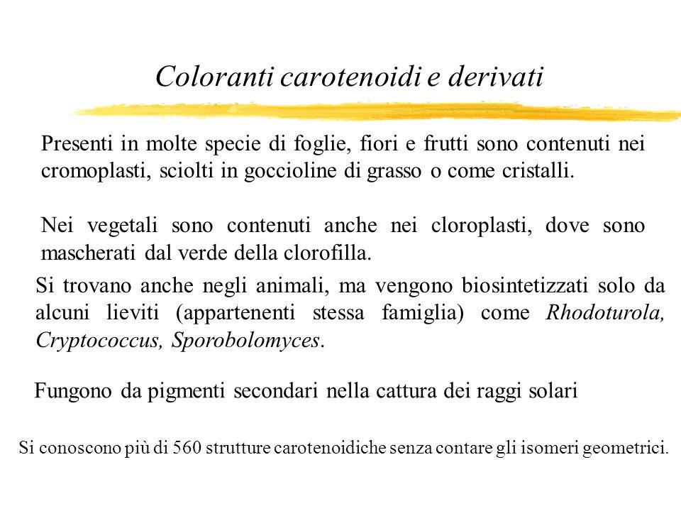 Coloranti carotenoidi e derivati