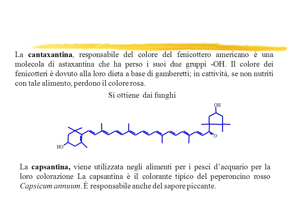 La cantaxantina, responsabile del colore del fenicottero americano è una molecola di astaxantina che ha perso i suoi due gruppi -OH. Il colore dei fenicotteri è dovuto alla loro dieta a base di gamberetti; in cattività, se non nutriti con tale alimento, perdono il colore rosa.