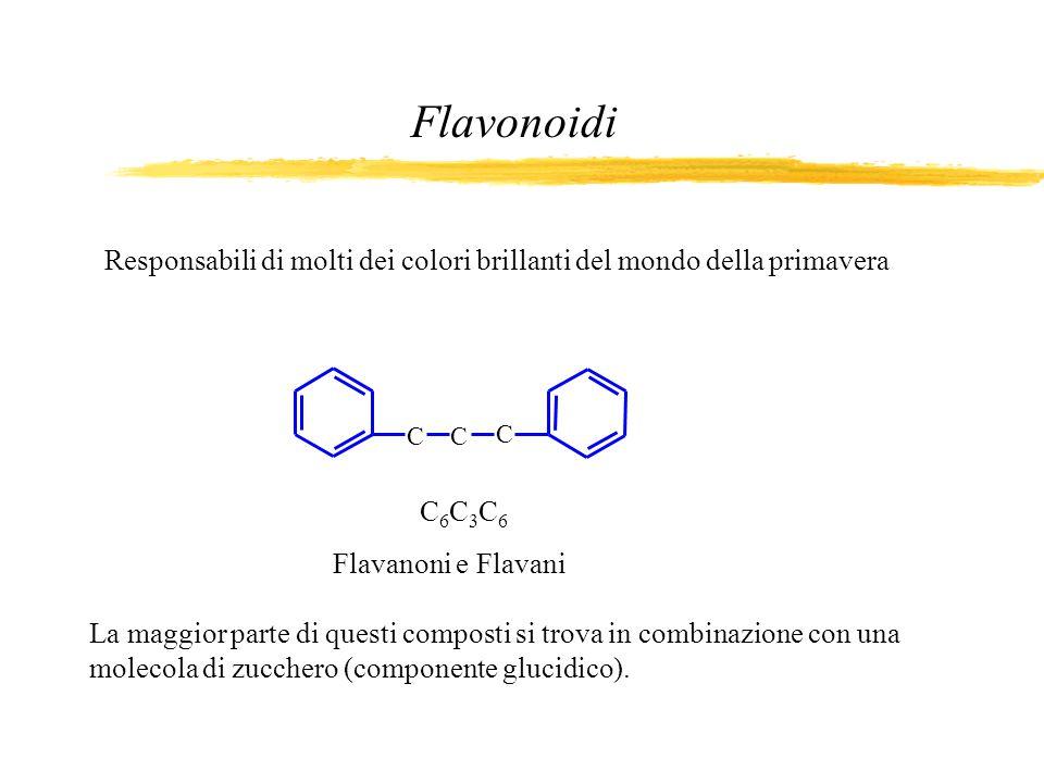 Flavonoidi Responsabili di molti dei colori brillanti del mondo della primavera. C. C. C. C6C3C6.