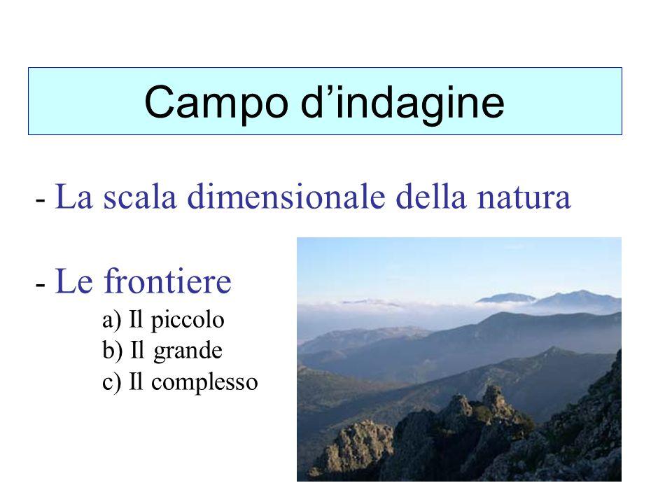 Campo d'indagine La scala dimensionale della natura Le frontiere