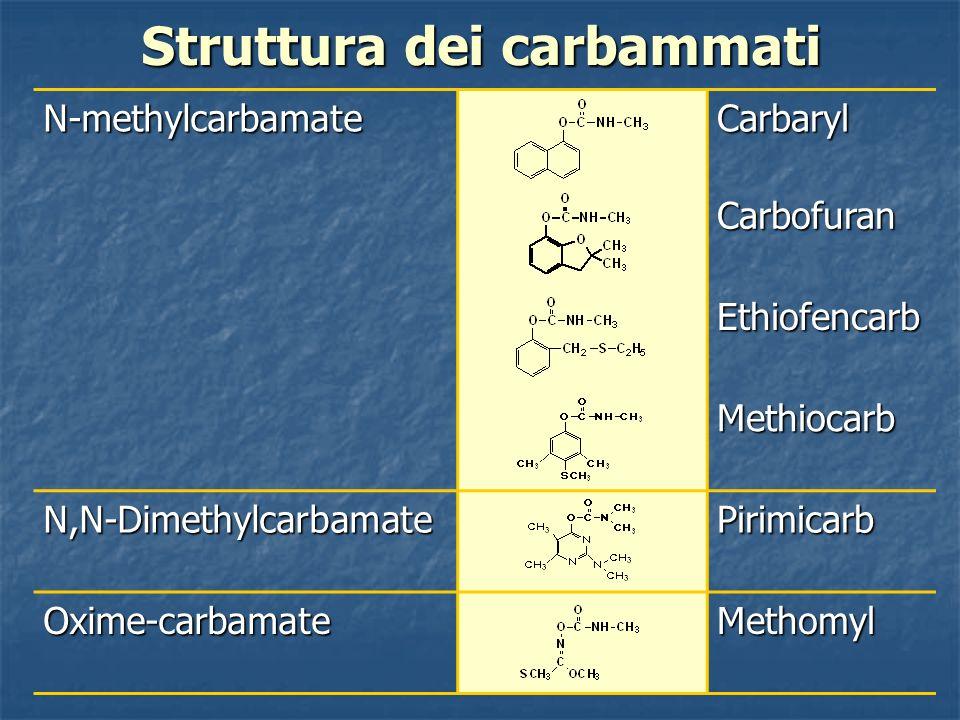 Struttura dei carbammati