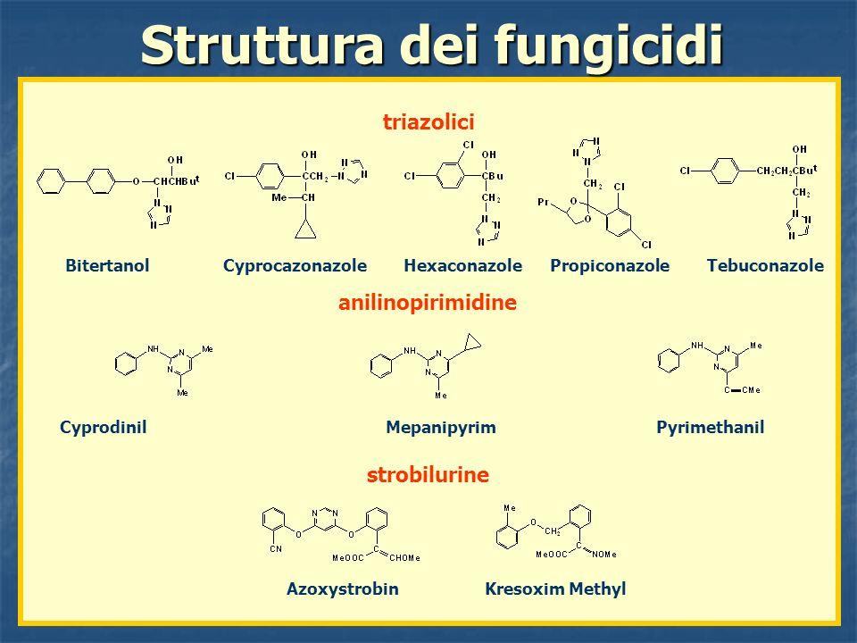 Struttura dei fungicidi
