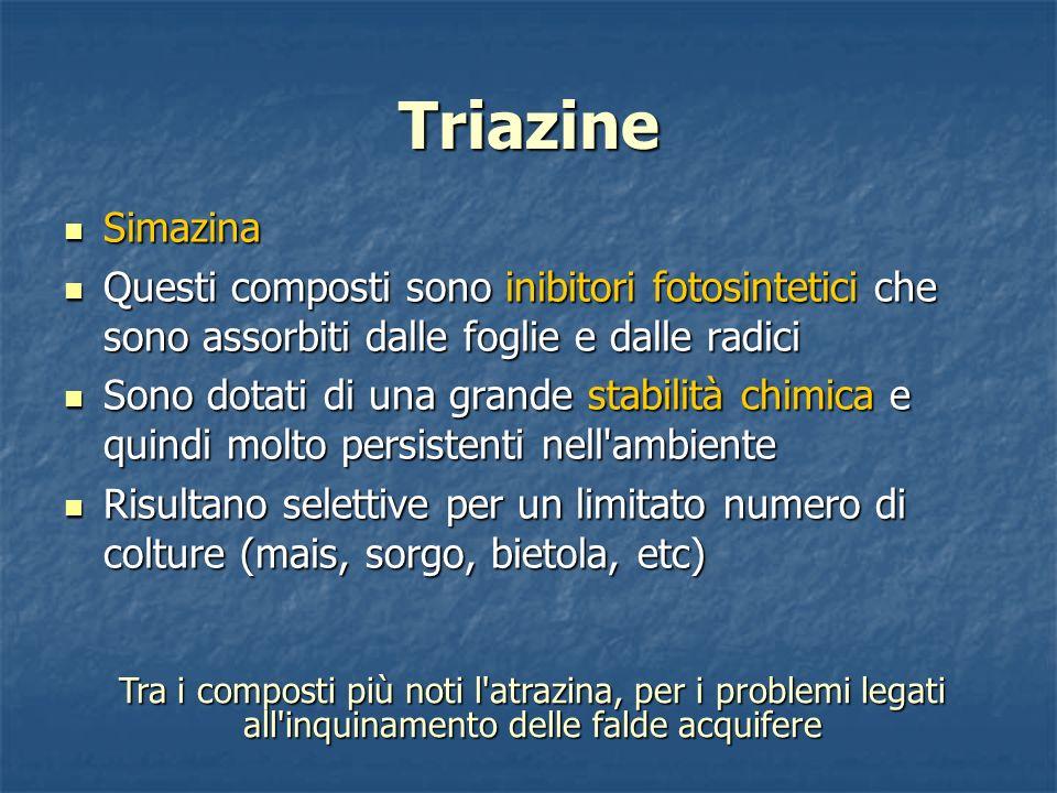 Triazine Simazina. Questi composti sono inibitori fotosintetici che sono assorbiti dalle foglie e dalle radici.