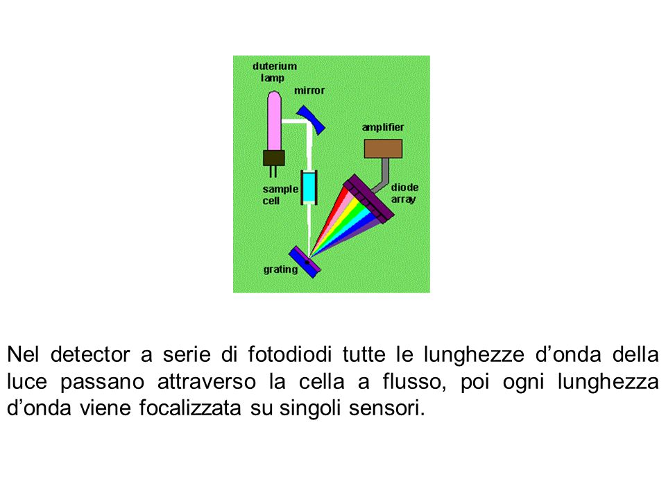 Nel detector a serie di fotodiodi tutte le lunghezze d'onda della luce passano attraverso la cella a flusso, poi ogni lunghezza d'onda viene focalizzata su singoli sensori.