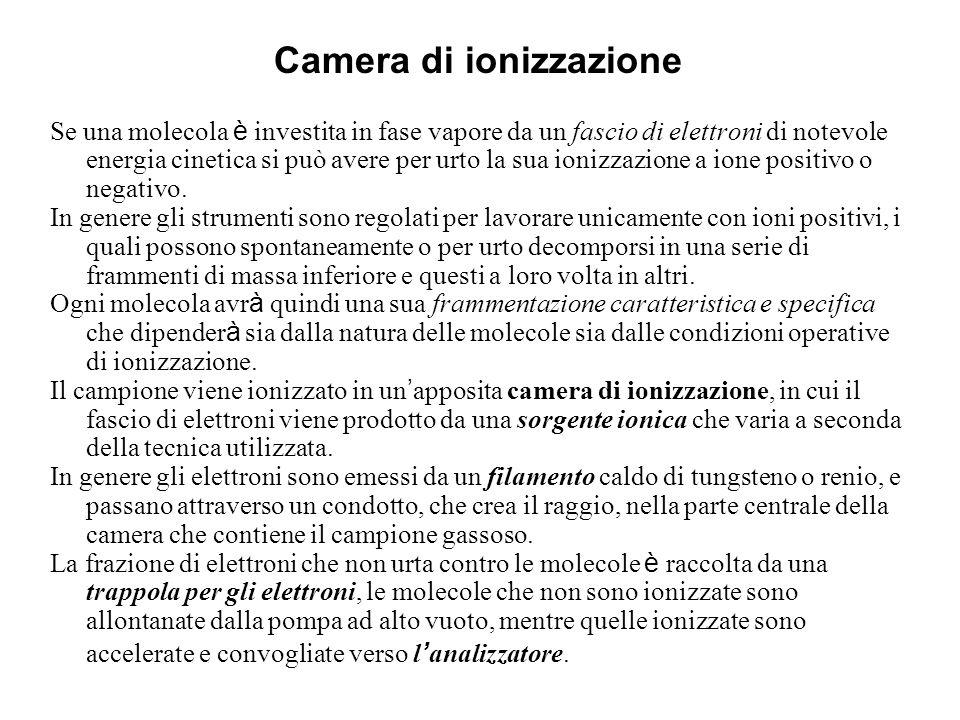 Camera di ionizzazione
