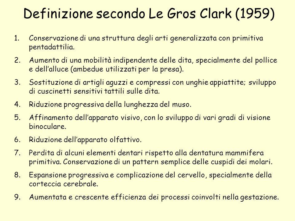 Definizione secondo Le Gros Clark (1959)