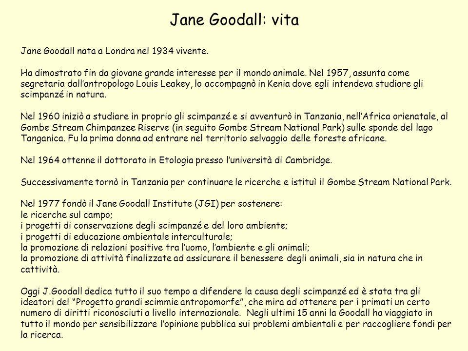 Jane Goodall: vita Jane Goodall nata a Londra nel 1934 vivente.