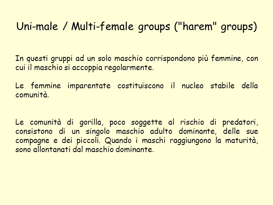 Uni-male / Multi-female groups ( harem groups)