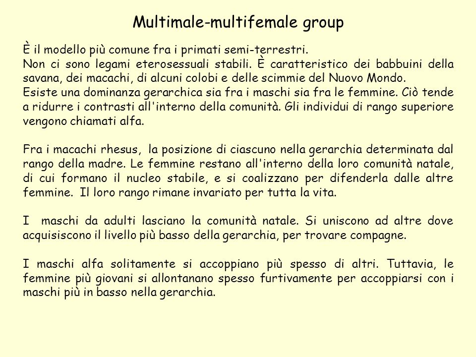 Multimale-multifemale group