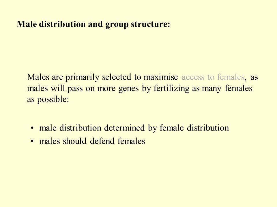 Male distribution and group structure:
