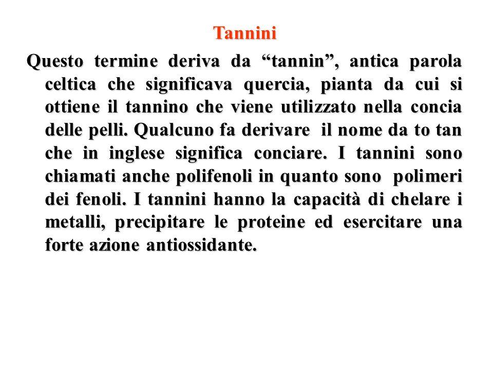 Tannini