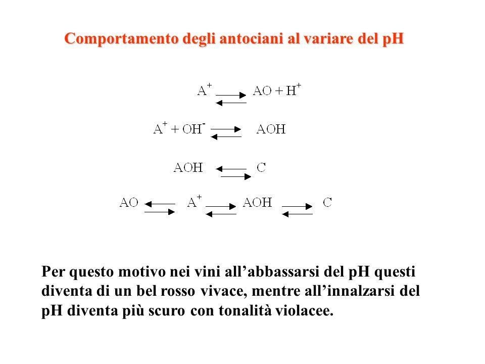 Comportamento degli antociani al variare del pH