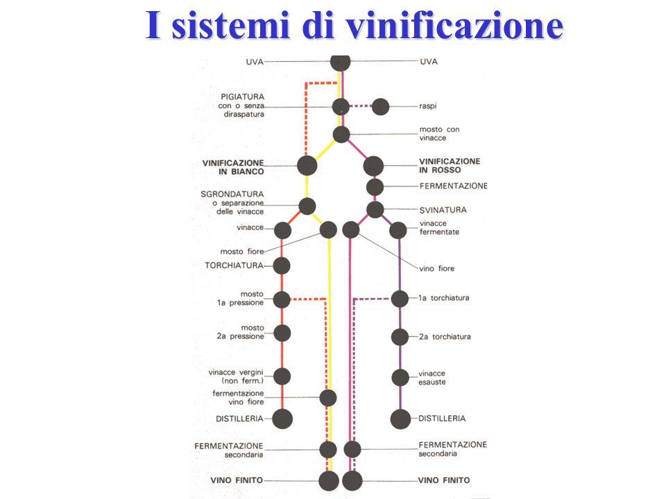 I sistemi di vinificazione