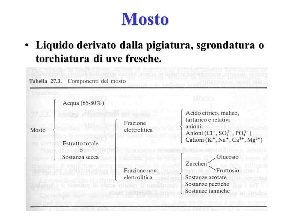 Mosto Liquido derivato dalla pigiatura, sgrondatura o torchiatura di uve fresche.