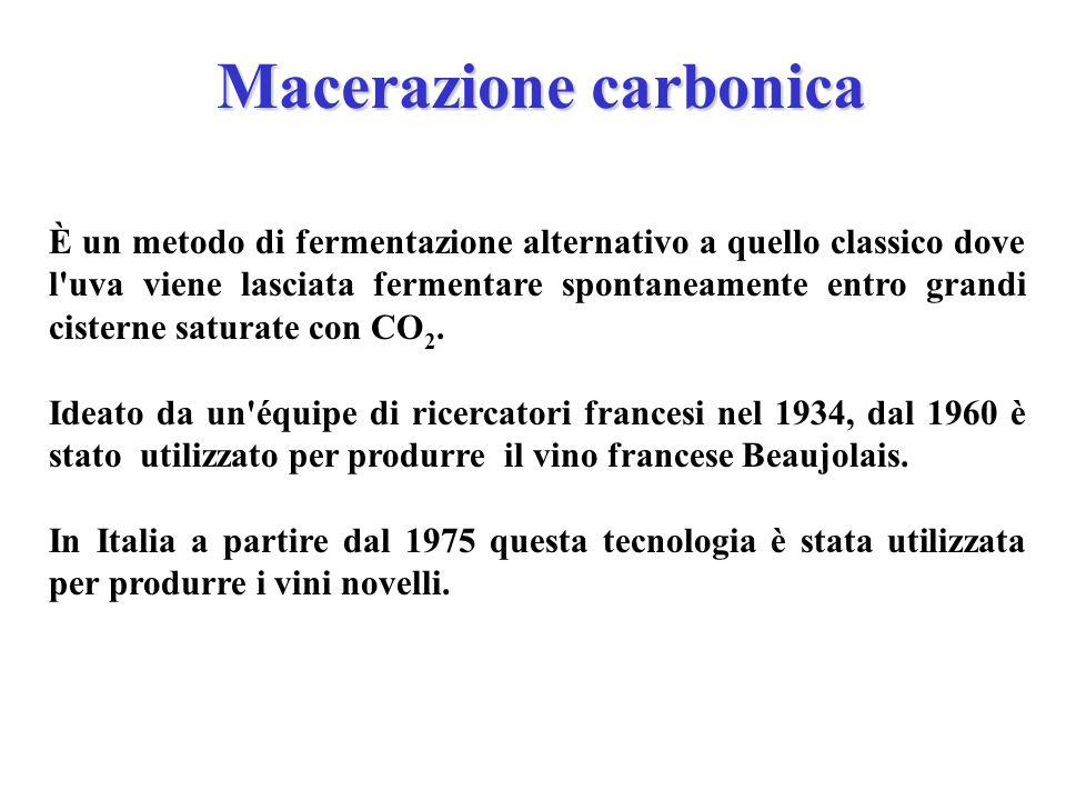 Macerazione carbonica