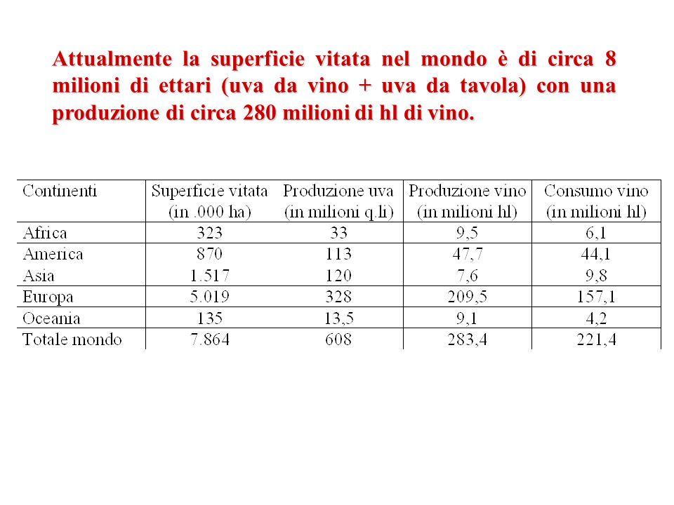 Attualmente la superficie vitata nel mondo è di circa 8 milioni di ettari (uva da vino + uva da tavola) con una produzione di circa 280 milioni di hl di vino.