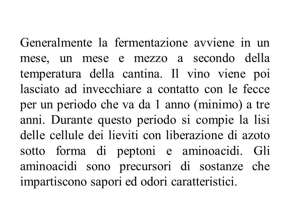 Generalmente la fermentazione avviene in un mese, un mese e mezzo a secondo della temperatura della cantina.