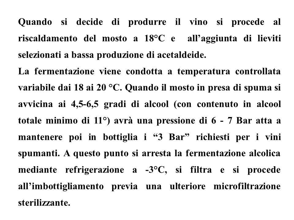 Quando si decide di produrre il vino si procede al riscaldamento del mosto a 18°C e all'aggiunta di lieviti selezionati a bassa produzione di acetaldeide.