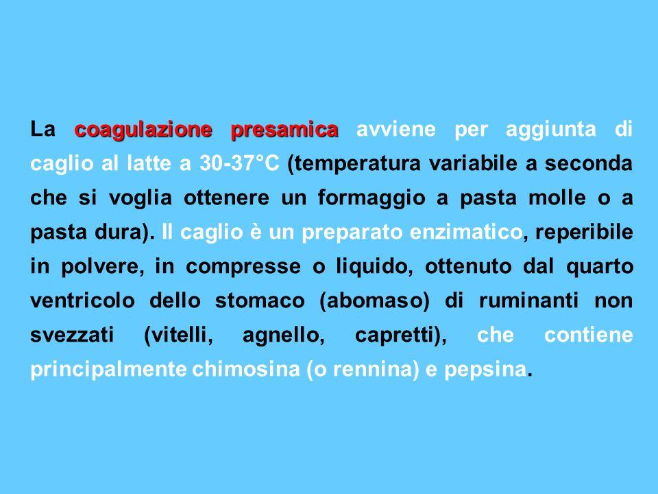 La coagulazione presamica avviene per aggiunta di caglio al latte a 30-37°C (temperatura variabile a seconda che si voglia ottenere un formaggio a pasta molle o a pasta dura).