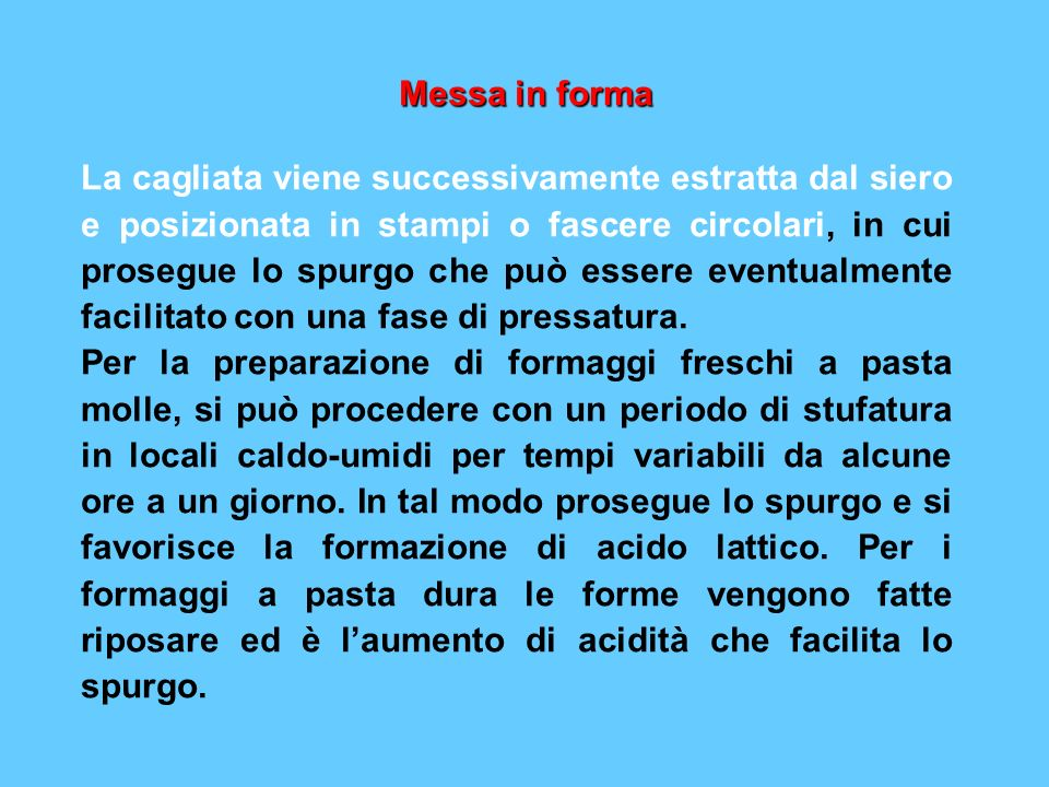 Messa in forma