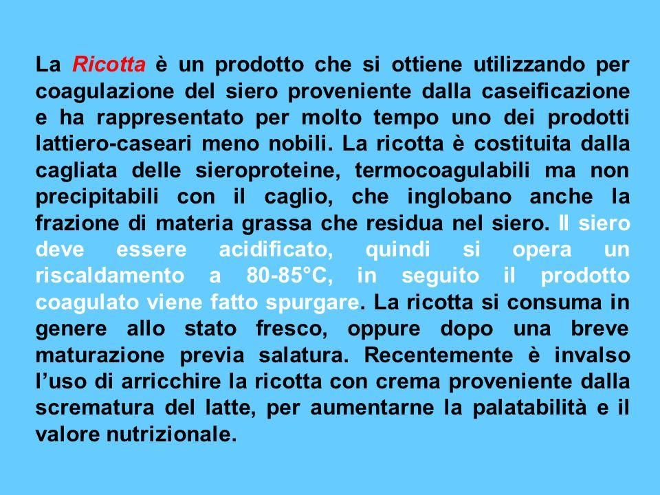 La Ricotta è un prodotto che si ottiene utilizzando per coagulazione del siero proveniente dalla caseificazione e ha rappresentato per molto tempo uno dei prodotti lattiero-caseari meno nobili.