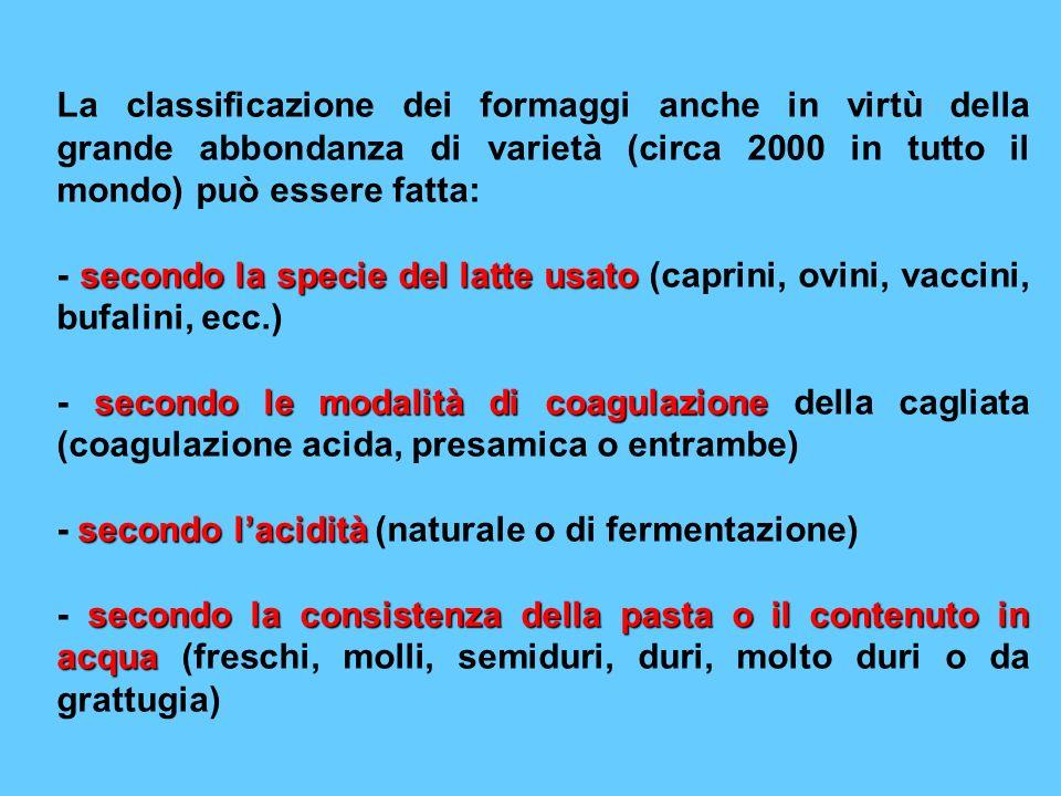 La classificazione dei formaggi anche in virtù della grande abbondanza di varietà (circa 2000 in tutto il mondo) può essere fatta: