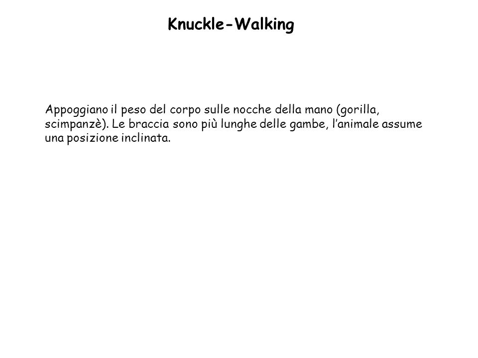 Knuckle-Walking