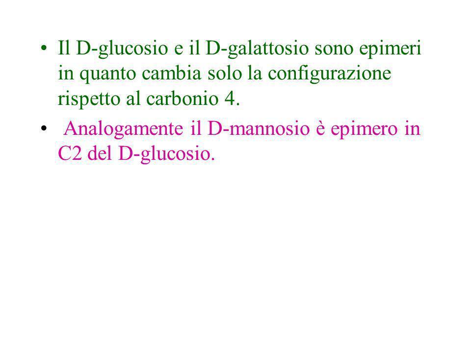 Il D-glucosio e il D-galattosio sono epimeri in quanto cambia solo la configurazione rispetto al carbonio 4.
