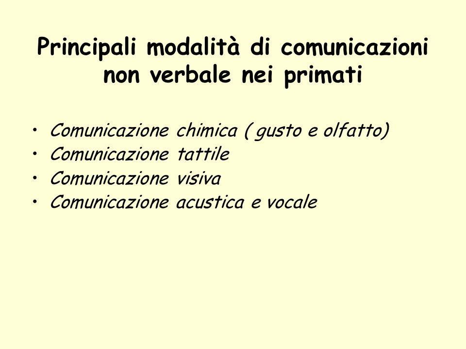 Principali modalità di comunicazioni non verbale nei primati