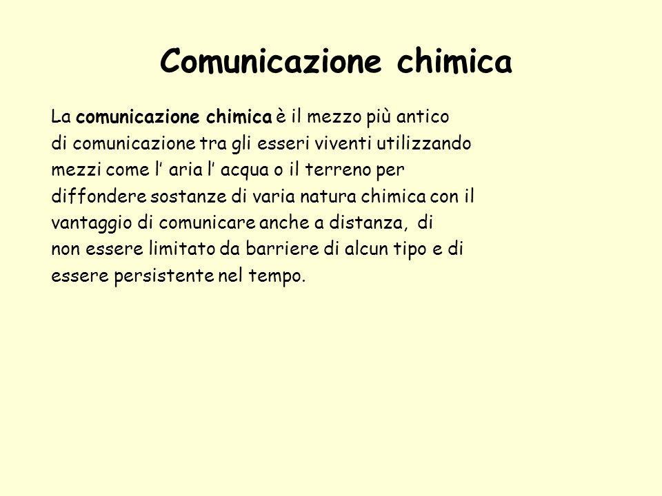 Comunicazione chimica