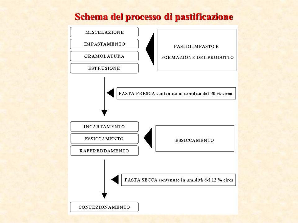 Schema del processo di pastificazione