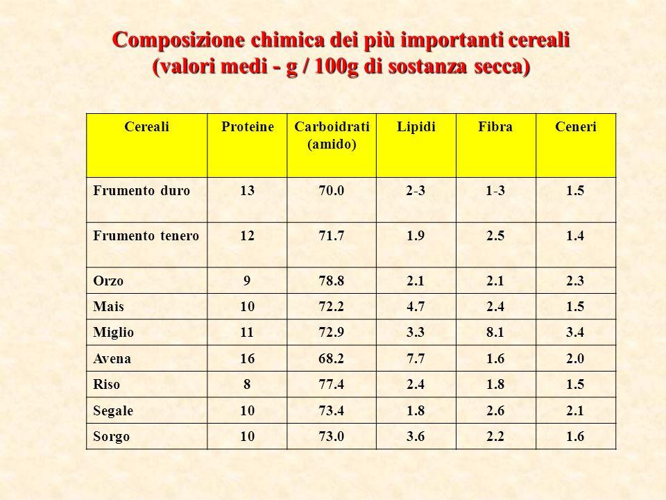 Composizione chimica dei più importanti cereali