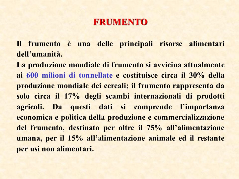 FRUMENTO Il frumento è una delle principali risorse alimentari dell'umanità.