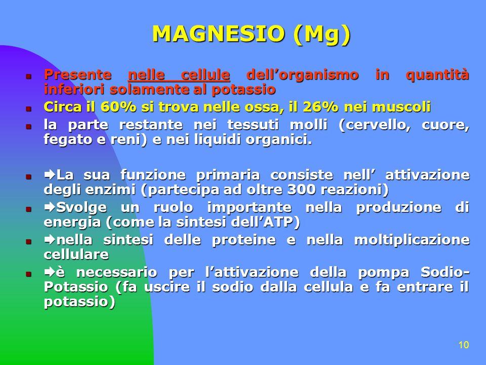 MAGNESIO (Mg) Presente nelle cellule dell'organismo in quantità inferiori solamente al potassio.
