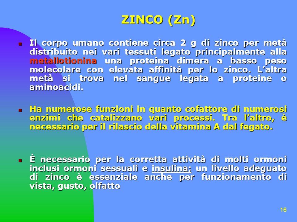 ZINCO (Zn)