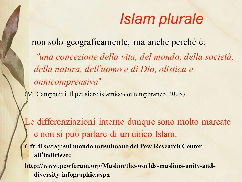 Islam plurale non solo geograficamente, ma anche perché è:
